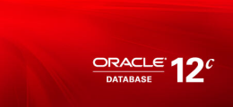 Oracle Database 12c: Apply 12.1.0.1.1 PSU (October2013)